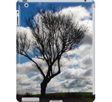 Silhouette Landscape iPad Case/Skin