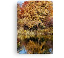 Autumn Trees Reflected Canvas Print