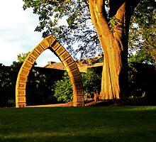 The Golden Arch by Peter Elliott