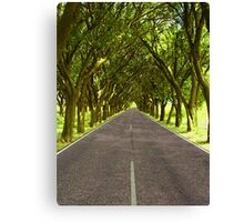Highway A1 Canvas Print