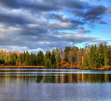 Forest Lake by Gary Smith