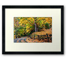 Autumn's Journey Framed Print