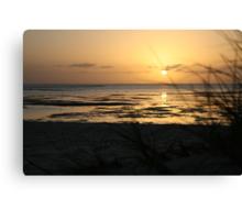 Sunrise at Monkey Mia Canvas Print