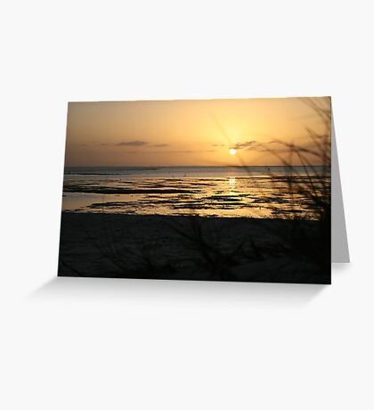 Sunrise at Monkey Mia Greeting Card