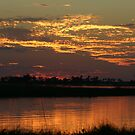 Sunset over the savuti channel by jozi1