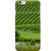 VIEW of the VINEYARD    ^ iPhone Case/Skin