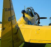Culpepper Air Show by ctheworld