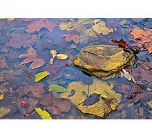 Indian autumn creek Photographic Print