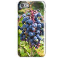 Blackthorn Berries iPhone Case/Skin