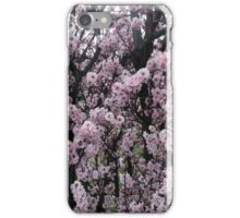 Winter Blossoms iPhone Case/Skin