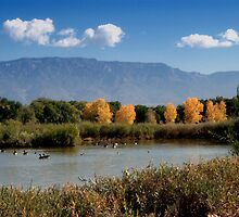 Rio Grande Nature Center 08 by Karl Eschenbach