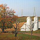 the White Barn by Geno Rugh