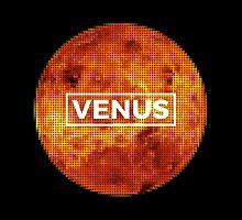 Venus Puzzle by Dev Radion