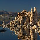 Mono Lake Tufa by Anne McKinnell