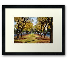 Wentworth Streetscape Framed Print