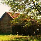 Homer Barn by Chelei