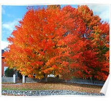 Fall in a New Hampshire Town Poster