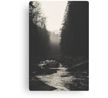 Morning river Canvas Print