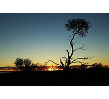 Sunset in the Bush II Photographic Print