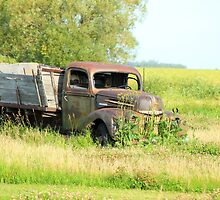 Antique Truck by rhamm