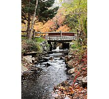 Autumn Brook in New England Photographic Print
