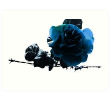 Blue Rose on Barb Wire Art Print