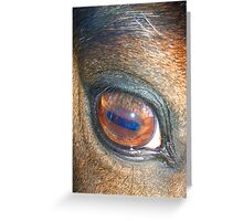 Eye Greeting Card