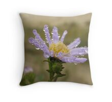 Aster and Sand dunes Throw Pillow