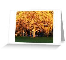Fall Rush Greeting Card