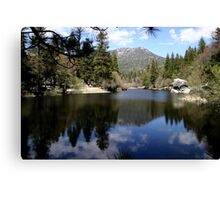 Water mirror - Silent Valley, CA Canvas Print