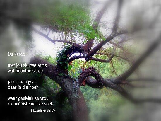 Karee-poetry by Elizabeth Kendall