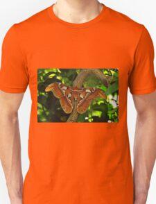 Atlas Moth T-Shirt