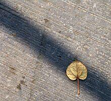 Hidden leaf by Dentanarts