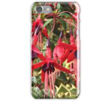 Hanging Basket iPhone Case/Skin