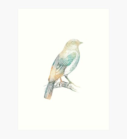 Vintage Bird - Geometric Art Print