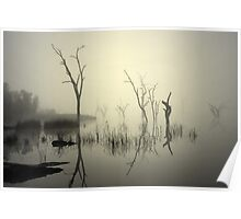 Morning fog - Lake Mulwala Poster