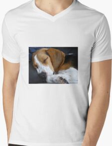 Beagle dog Mens V-Neck T-Shirt