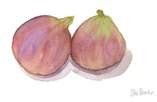 Fat figs by Sue Brown