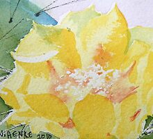 Yellow Prickly Pear Cactus Flower, Soft  by Nan Henke