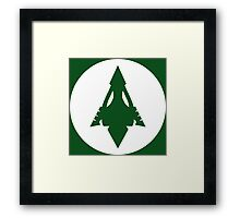 Arrow, Lantern, Whatever's Green Framed Print