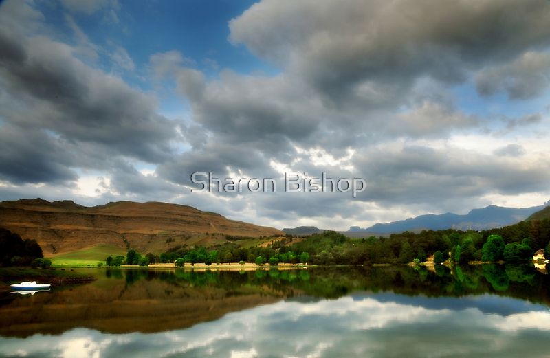 Naverone reflection - South Africa by Sharon Bishop