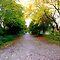 Brick roads and walks-no stone or cobblestones
