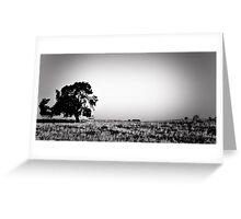 Field Of Empty Dreams Greeting Card