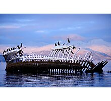Shipwreck at the arctic coast Photographic Print