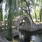 The Ruins of the Imperial Gardens of Beijing by Leanne Catherine Quinn