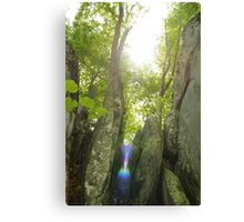 Ancient Witness Canvas Print