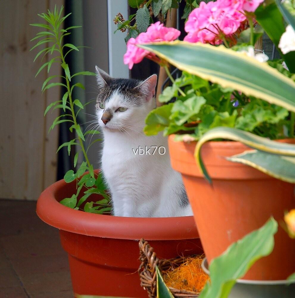 Flower Girl by vbk70