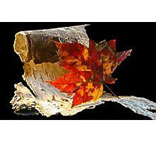 Autumnal Photographic Print