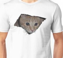 Ceiling Cat Unisex T-Shirt