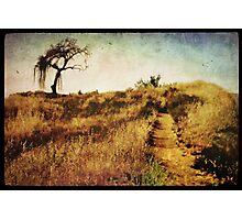 The Secret Pathway To Aspiration Photographic Print